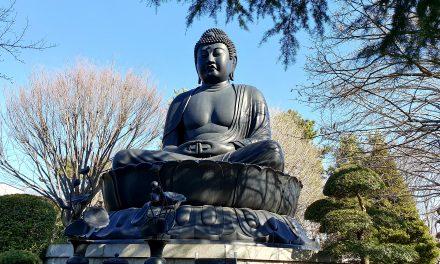 Tokyo Daibutsu – the giant Buddha of Tokyo
