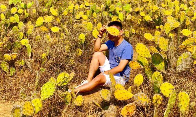 Quy Nhơn – Phú Yên – Đã nẵng – Chuyến Đi Của Những Tháng Ngày Tuổi Trẻ