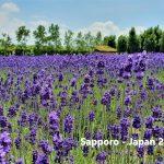 Sapporo – Phía bắc Nhật Bản