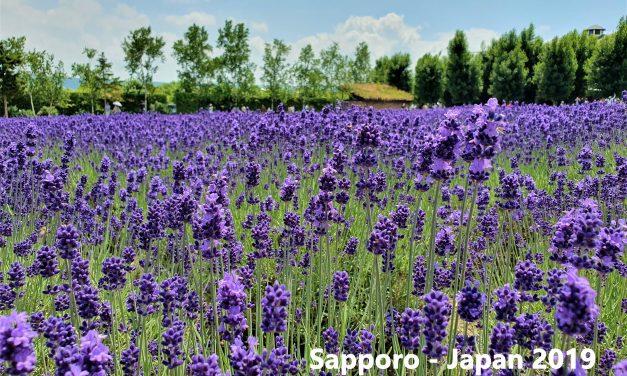 Sapporo-Japan July 2019