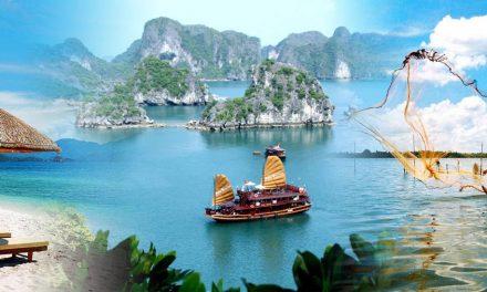 Việt Nam – 12 tháng 4 tuần 7 ngày 24 giờ