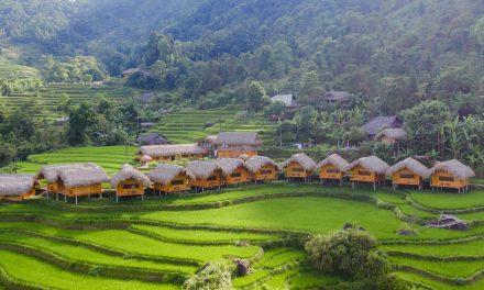 Hoàng Su Phì Lodge ***